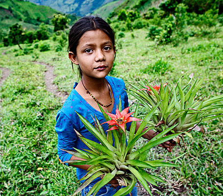 photograph of young girl with bromeliads